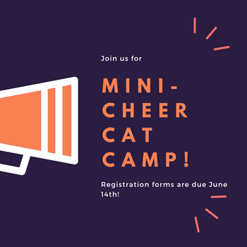Join us for Mini-Cheer Cats Camp!