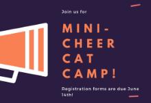 Mini-Cheer Cat Camp