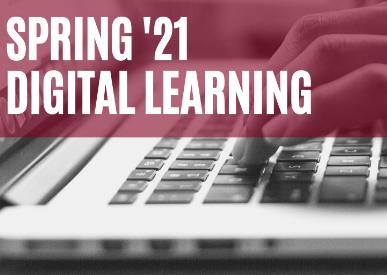 Digital/Distance Learning Enrollment
