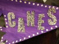 Canes Banner