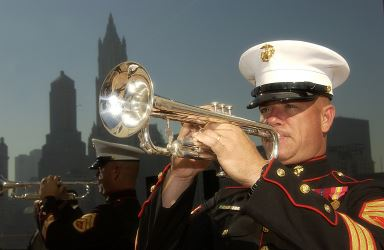 marine trumpet