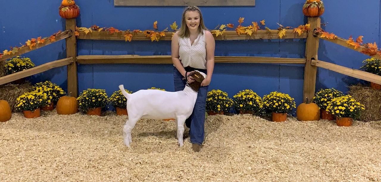 FFA Goat Show 2019